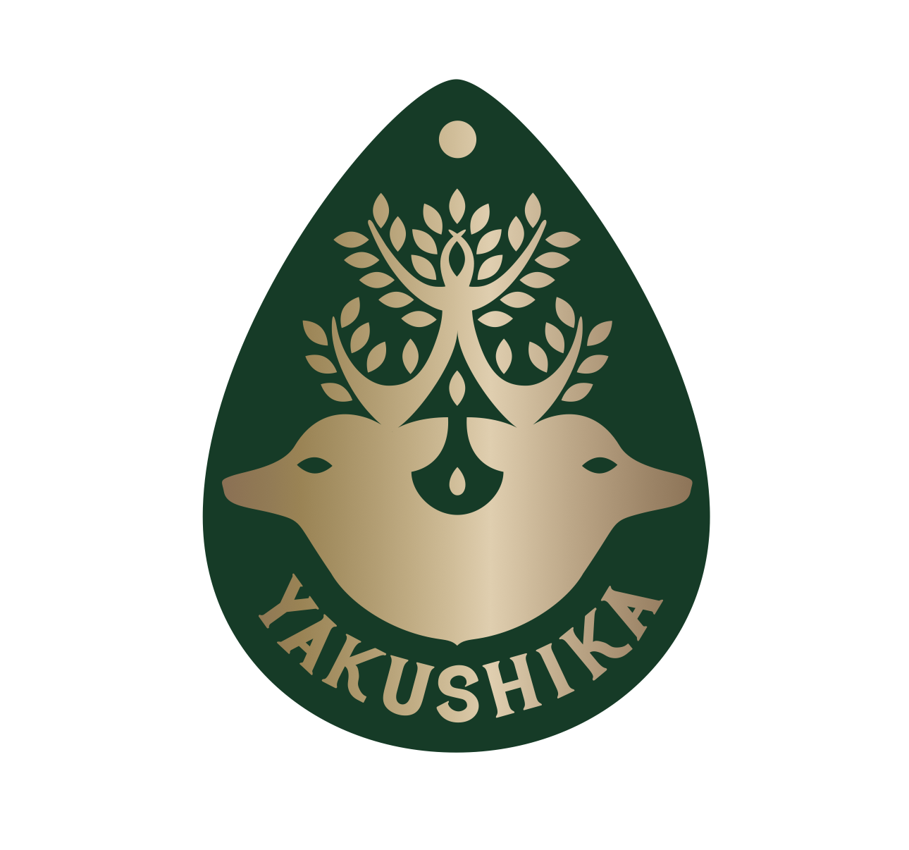 鹿児島県屋久島 / YAKUSHIKA2