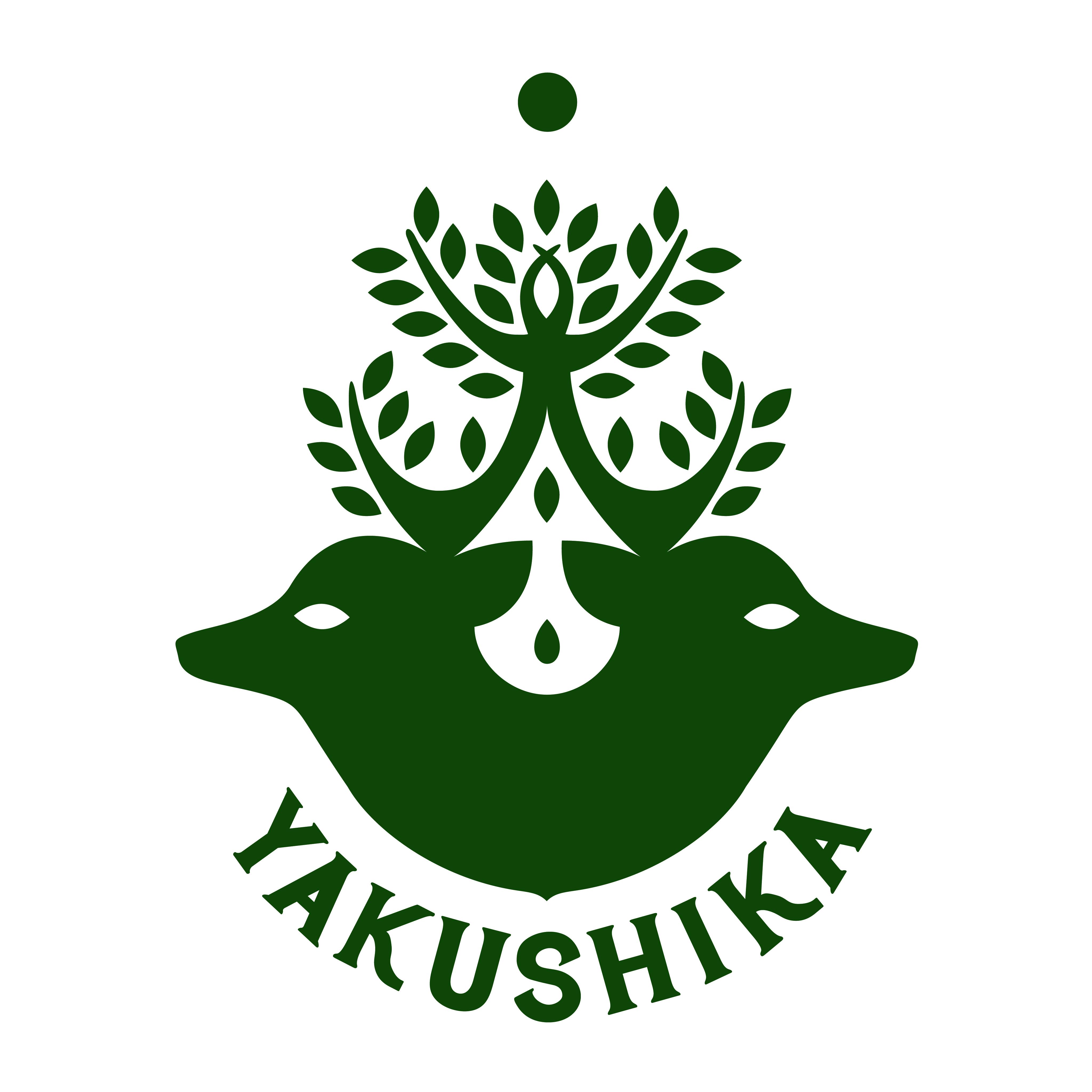鹿児島県屋久島 / YAKUSHIKA1